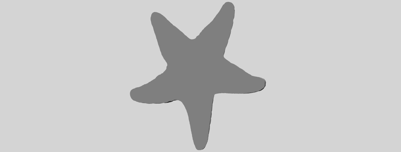 12_TDA0608_Starfish_02A07.png Download free STL file Starfish 02 • 3D printer design, GeorgesNikkei