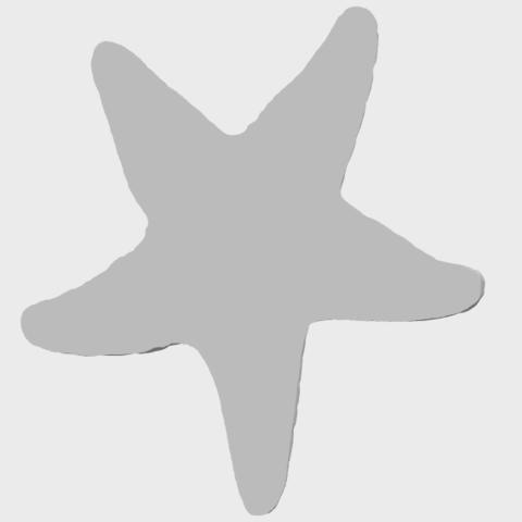 12_TDA0608_Starfish_02A07.png Télécharger fichier STL gratuit Étoile de mer 02 • Plan pour impression 3D, GeorgesNikkei