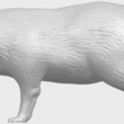 07_TDA0601_FoxA01.png Download free STL file Fox • 3D printer model, GeorgesNikkei