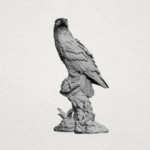 eagle - A01.png Download free STL file Eagle 01 • 3D printing design, GeorgesNikkei