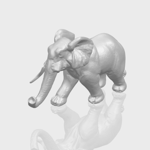 07_Elephant_01_92.6mmA00-1.png Download free STL file Elephant 01 • 3D printer design, GeorgesNikkei