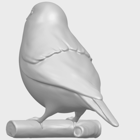 05_TDA0604_SparrowA08.png Download free STL file Sparrow • 3D print template, GeorgesNikkei