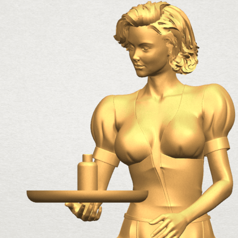 TDA0475 Beautiful Girl 09 Waitress A08.png Download free STL file Beautiful Girl 09 Waitress • 3D printable object, GeorgesNikkei