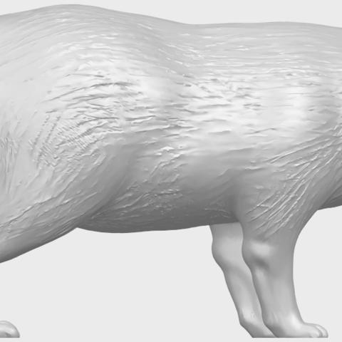 07_TDA0601_FoxA06.png Download free STL file Fox • 3D printer model, GeorgesNikkei