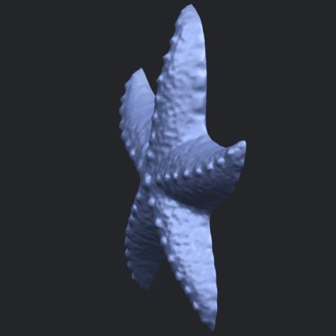 10_TDA0609_Starfish_03B03.png Télécharger fichier STL gratuit Étoile de mer 03 • Plan pour imprimante 3D, GeorgesNikkei