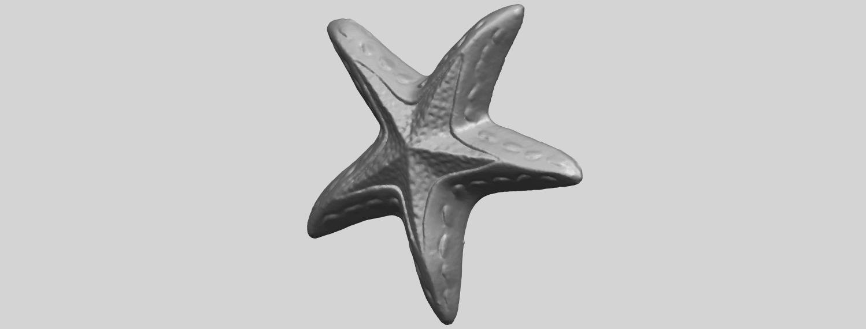 14_TDA0607_Starfish_01A02.png Télécharger fichier STL gratuit Étoile de mer 01 • Design à imprimer en 3D, GeorgesNikkei