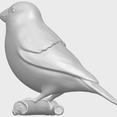 05_TDA0604_SparrowA07.png Download free STL file Sparrow • 3D print template, GeorgesNikkei