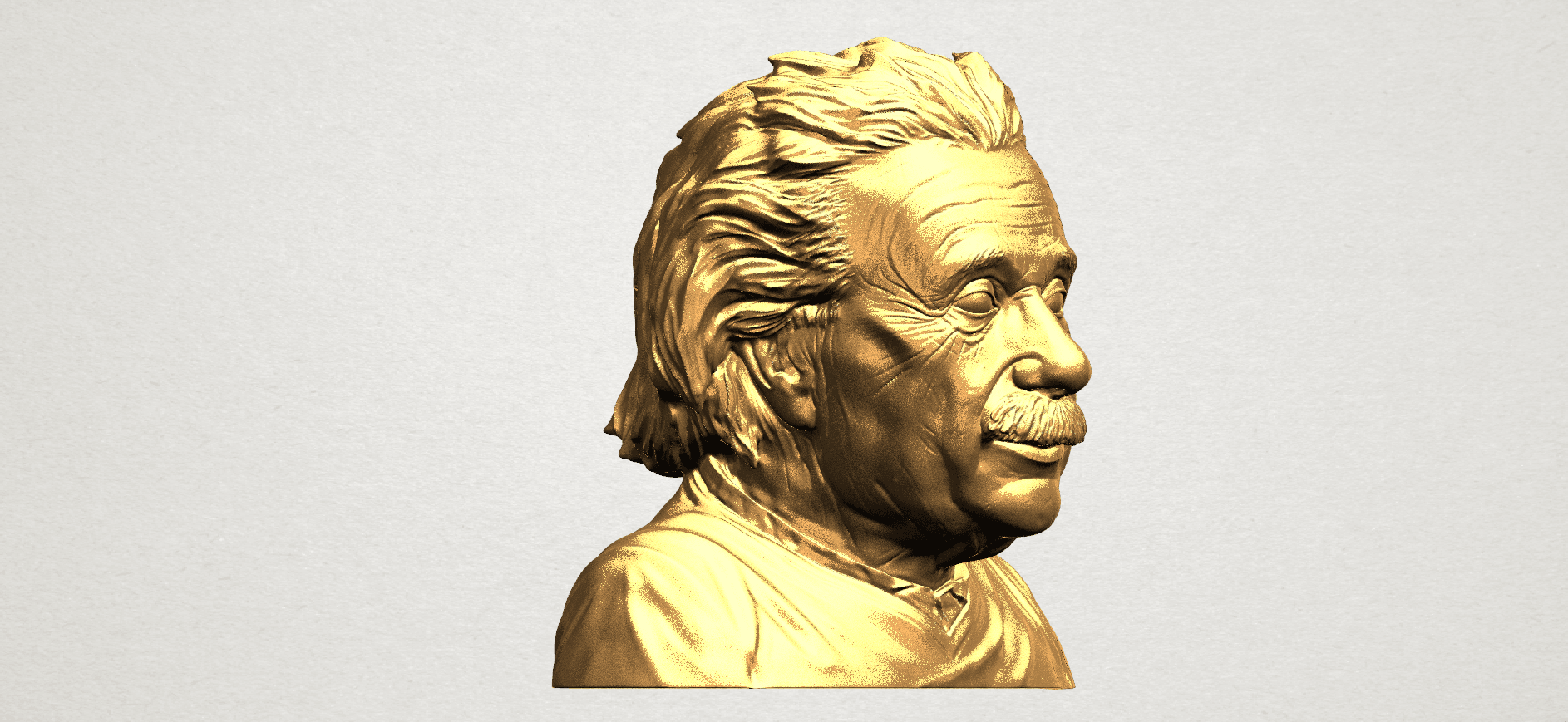 Einstein A06.png Download free STL file Einstein • 3D printer template, GeorgesNikkei
