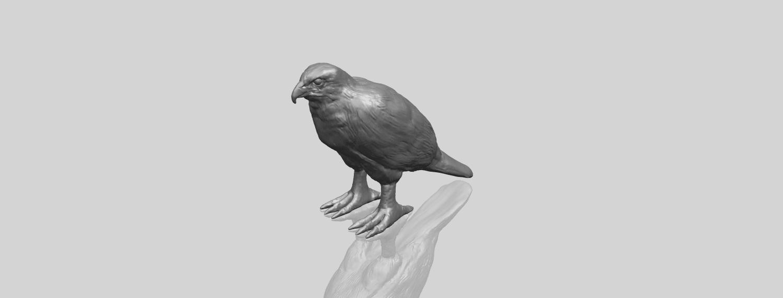 12_TDA0599_Eagle_02A00-1.png Download free STL file Eagle 02 • 3D printable design, GeorgesNikkei