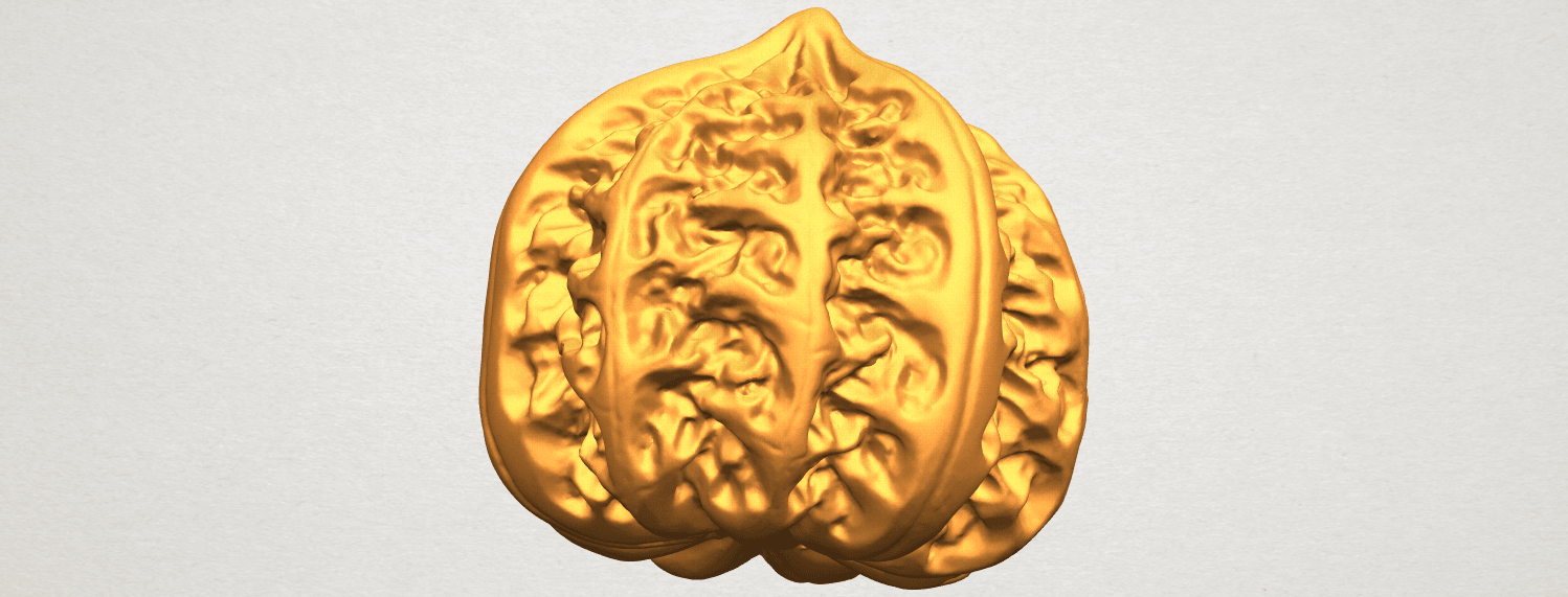 A01.png Download free STL file Walnut • 3D print object, GeorgesNikkei
