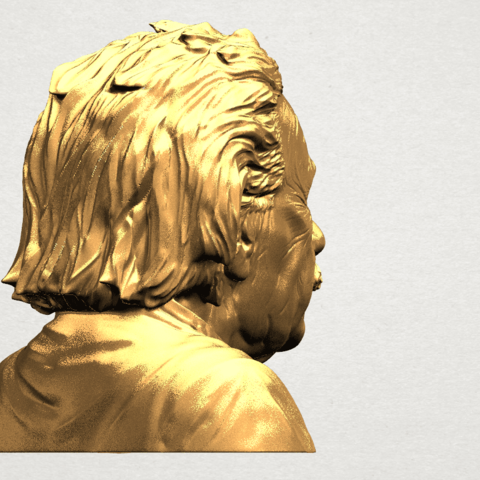 Einstein A05.png Download free STL file Einstein • 3D printer template, GeorgesNikkei