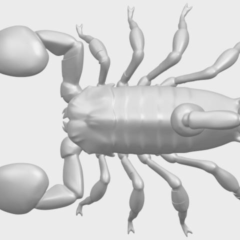 08_TDA0603_ScorpionA01.png Télécharger fichier STL gratuit Scorpion • Objet pour imprimante 3D, GeorgesNikkei