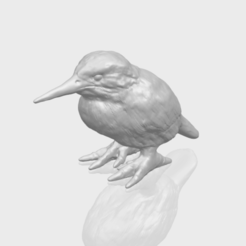 Free 3d printer model Kingfisher, GeorgesNikkei