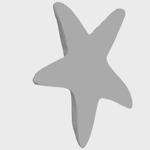 14_TDA0607_Starfish_01A05.png Télécharger fichier STL gratuit Étoile de mer 01 • Design à imprimer en 3D, GeorgesNikkei