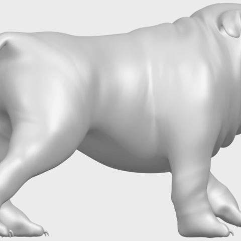 14_TDA0520_Bull_Dog_01A08.png Télécharger fichier STL gratuit Chien de taureau 01 • Plan pour impression 3D, GeorgesNikkei