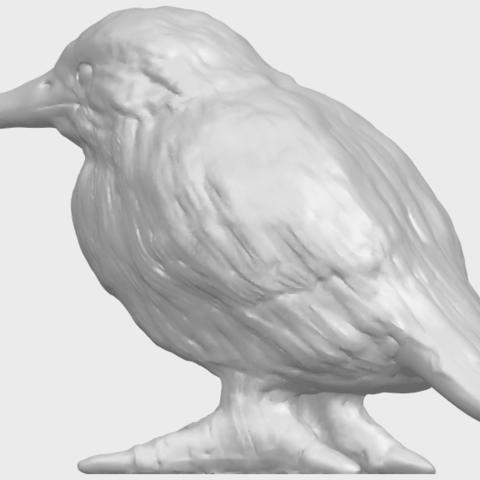 TDA0752_KingfisherA02.png Télécharger fichier STL gratuit Martin-pêcheur • Objet pour impression 3D, GeorgesNikkei