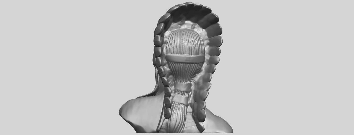 09_TDA0489_Red_Indian_03_BustA06.png Download free STL file Red Indian 03 • 3D printer model, GeorgesNikkei