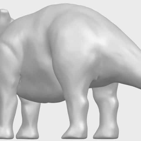 17_TDA0759_Triceratops_01A02.png Télécharger fichier STL gratuit Triceratops 01 • Modèle pour imprimante 3D, GeorgesNikkei