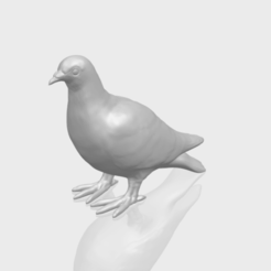 Free 3D model Sparrow 02, GeorgesNikkei