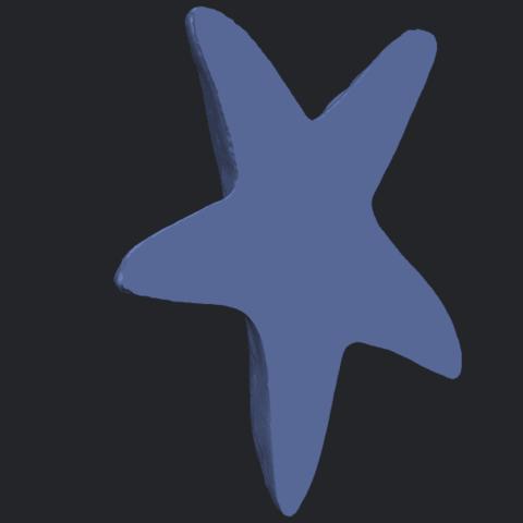 14_TDA0607_Starfish_01B05.png Télécharger fichier STL gratuit Étoile de mer 01 • Design à imprimer en 3D, GeorgesNikkei