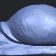 Free 3D printer designs Snail, GeorgesNikkei