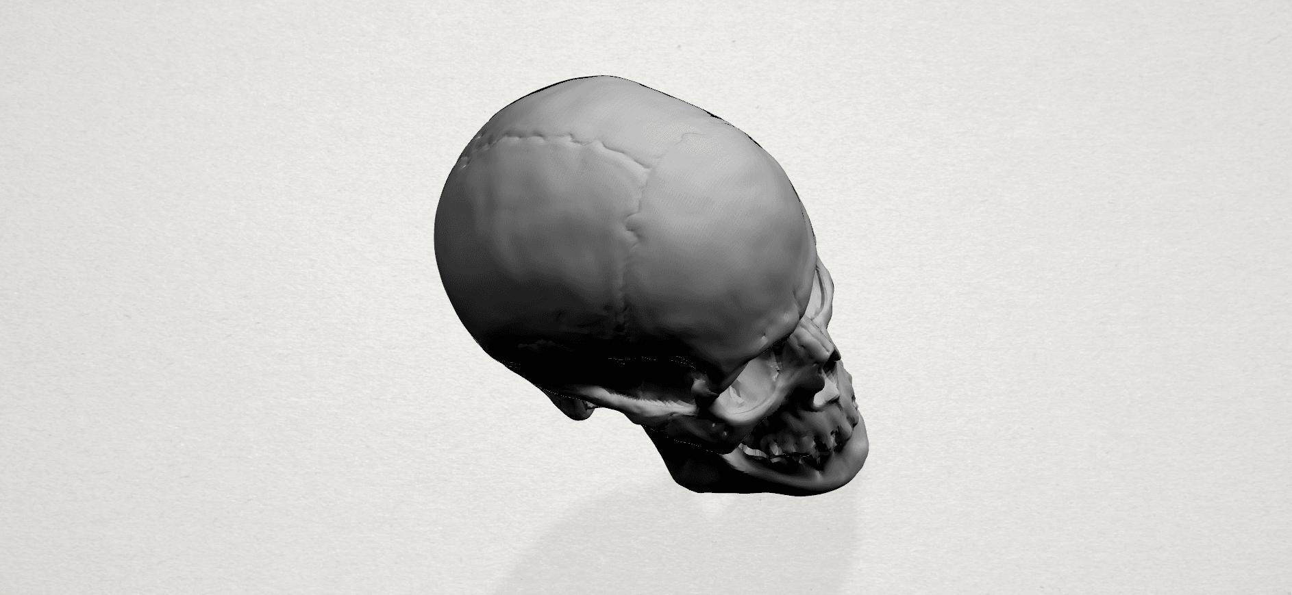 Skull - A05.png Télécharger fichier STL gratuit Crâne 01 • Objet imprimable en 3D, GeorgesNikkei