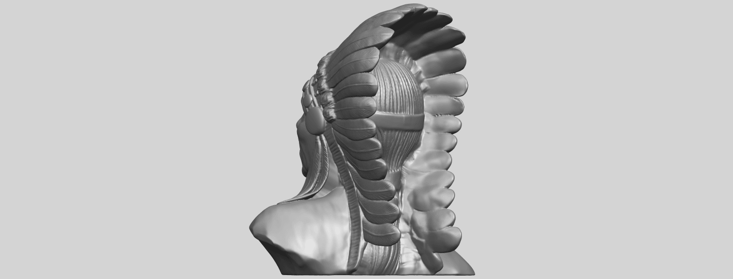 09_TDA0489_Red_Indian_03_BustA05.png Download free STL file Red Indian 03 • 3D printer model, GeorgesNikkei