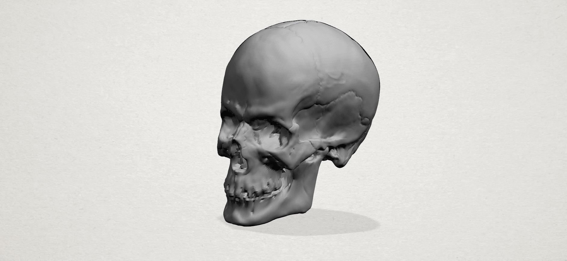 Skull - A01.png Télécharger fichier STL gratuit Crâne 01 • Objet imprimable en 3D, GeorgesNikkei