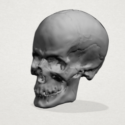 Free 3D printer files Skull 01, GeorgesNikkei