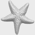 12_TDA0608_Starfish_02A01.png Télécharger fichier STL gratuit Étoile de mer 02 • Plan pour impression 3D, GeorgesNikkei