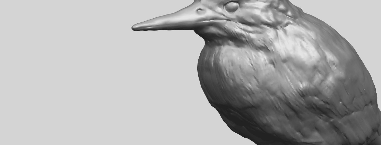 TDA0752_KingfisherA10.png Télécharger fichier STL gratuit Martin-pêcheur • Objet pour impression 3D, GeorgesNikkei