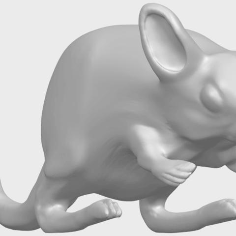 TDA0756_Rat_01A08.png Télécharger fichier STL gratuit Rat 01 • Plan pour impression 3D, GeorgesNikkei