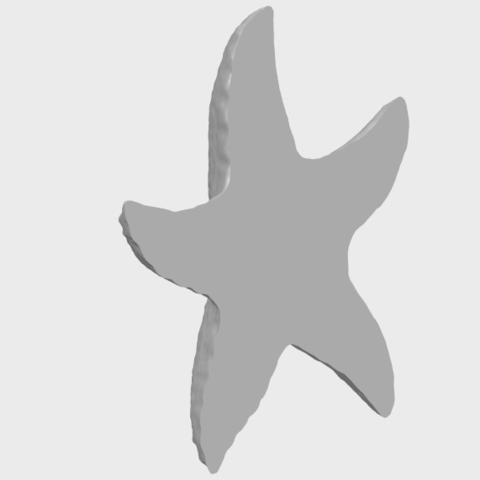 10_TDA0609_Starfish_03A05.png Télécharger fichier STL gratuit Étoile de mer 03 • Plan pour imprimante 3D, GeorgesNikkei