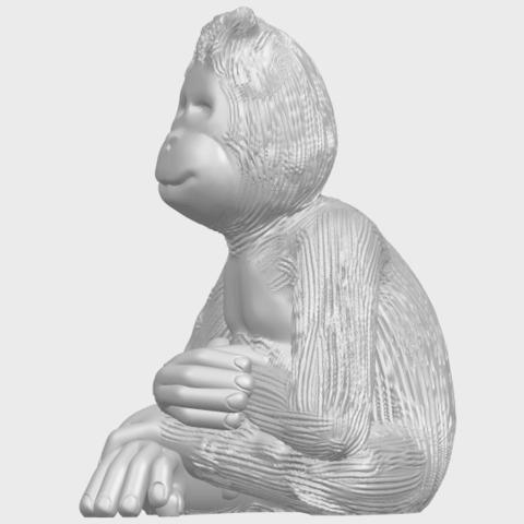 09_TDA0606_ChimpanzeeA03.png Télécharger fichier STL gratuit Chimpanzé • Design imprimable en 3D, GeorgesNikkei