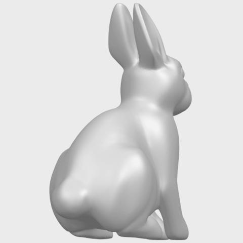 TDA0755_Rabbit_03A05.png Télécharger fichier STL gratuit Lapin 03 • Design à imprimer en 3D, GeorgesNikkei