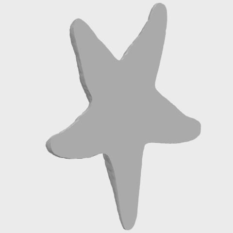 12_TDA0608_Starfish_02A05.png Télécharger fichier STL gratuit Étoile de mer 02 • Plan pour impression 3D, GeorgesNikkei
