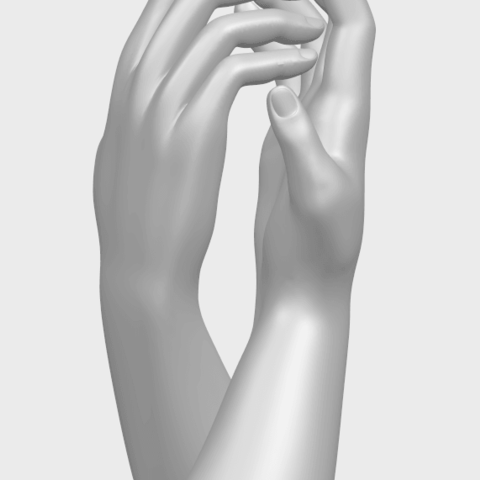 TDA0757_Hands_02A10.png Download free STL file Hands 02 • Model to 3D print, GeorgesNikkei