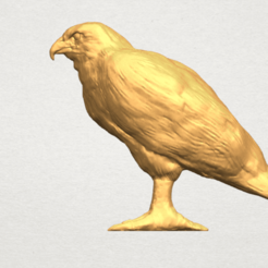 Free 3D model Eagle 02, GeorgesNikkei