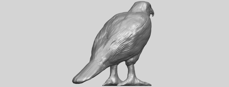 12_TDA0599_Eagle_02A05.png Download free STL file Eagle 02 • 3D printable design, GeorgesNikkei