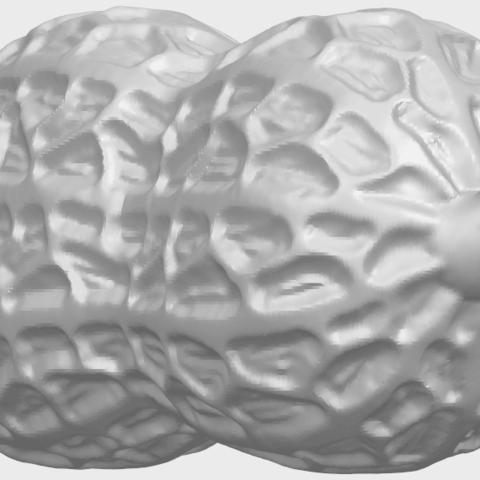 TDA0327_PeanutA08.png Download free STL file Peanut • 3D printer model, GeorgesNikkei