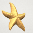 TDA0609 Starfish 03 A03.png Télécharger fichier STL gratuit Étoile de mer 03 • Plan pour imprimante 3D, GeorgesNikkei