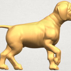 Free STL files Bull Dog 02, GeorgesNikkei