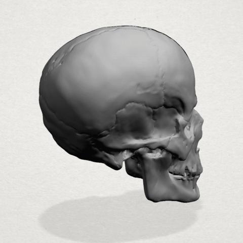 Skull - A04.png Télécharger fichier STL gratuit Crâne 01 • Objet imprimable en 3D, GeorgesNikkei