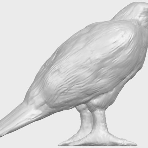 12_TDA0599_Eagle_02A06.png Download free STL file Eagle 02 • 3D printable design, GeorgesNikkei