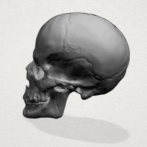 Skull - A02.png Télécharger fichier STL gratuit Crâne 01 • Objet imprimable en 3D, GeorgesNikkei