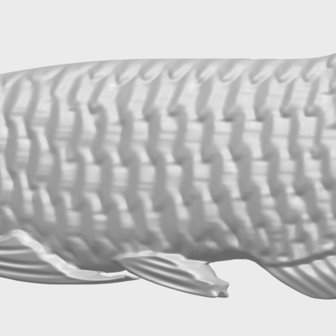 02_Fish_i_100mm_A02.png Download free STL file Fish 01 • 3D printable model, GeorgesNikkei