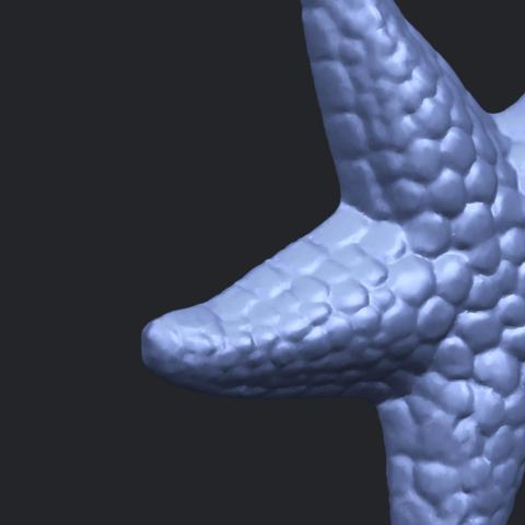 12_TDA0608_Starfish_02A10.png Télécharger fichier STL gratuit Étoile de mer 02 • Plan pour impression 3D, GeorgesNikkei