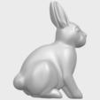 Impresiones 3D gratis Conejo 03, GeorgesNikkei