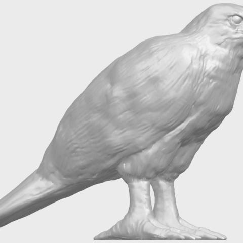 12_TDA0599_Eagle_02A07.png Download free STL file Eagle 02 • 3D printable design, GeorgesNikkei