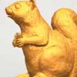 Free 3D model Squirrel 01, GeorgesNikkei